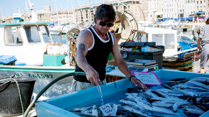 Marseille-Fish-Market-1