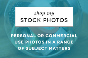 shop ciera design stock photos